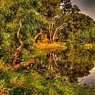 Reflecting Time - Wonga Wetlands, Albury , NSW Australia - The HDR Experience by Philip Johnson