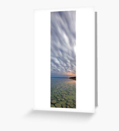 Lake Clifton Thrombolites  Greeting Card