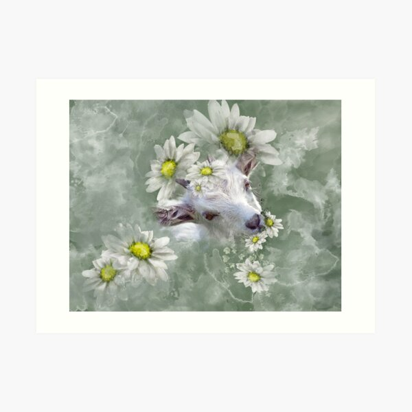 Don't Eat the Daisies Baby Goat Art Print