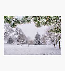 White And Wintery At Peel Park, Bradford Photographic Print