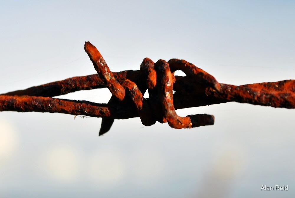 Rusty wire by Alan Reid