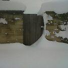 Snow Gate by Joy Williams
