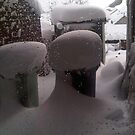 Snow Hat for Bins by Joy Williams