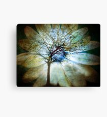 The Truth of Trees Canvas Print
