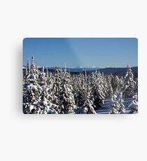 Winter wonderland in Montana  Metal Print