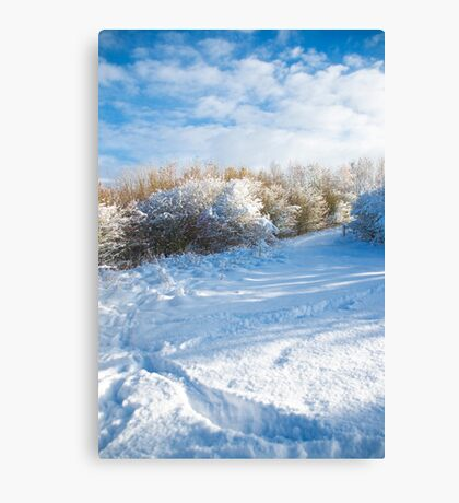 Winter wonderland where I live in the Meadows  Canvas Print