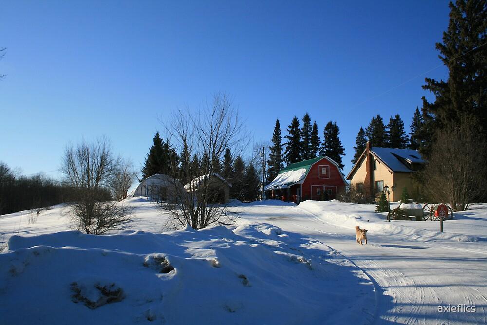 winter in saskatchewan by axieflics