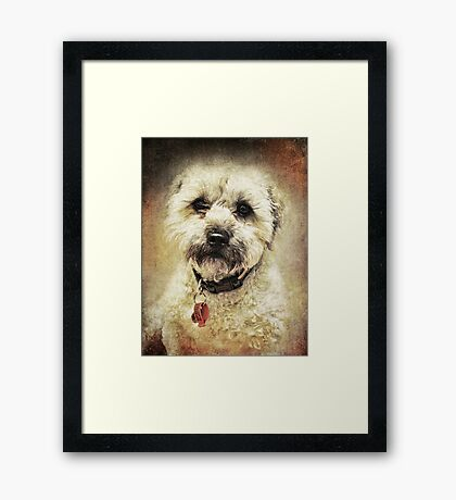 Coco Framed Print