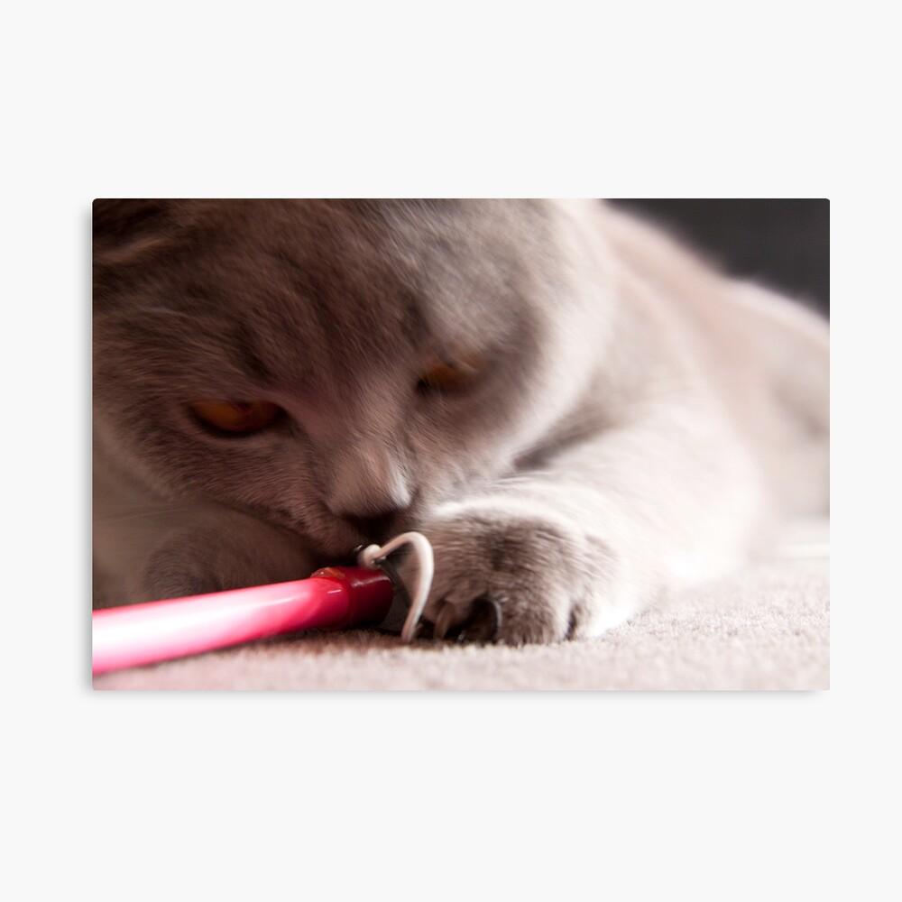 Cat Attack Lámina metálica