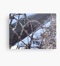 Wire Metal Print