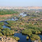 Nile River Cataracts by Laurel Talabere