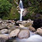 Dorothy Falls, West Coast by Michael Treloar