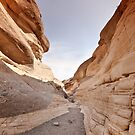 Squeeze through Mosaic Canyon by Owed To Nature