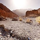 Mosaic Canyon Desert and Sun by Owed To Nature