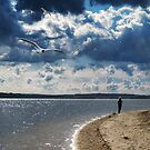 Island on a large river. Spring, clouds on sky. A few gulls in sky. A woman - sportsman. by mike2048