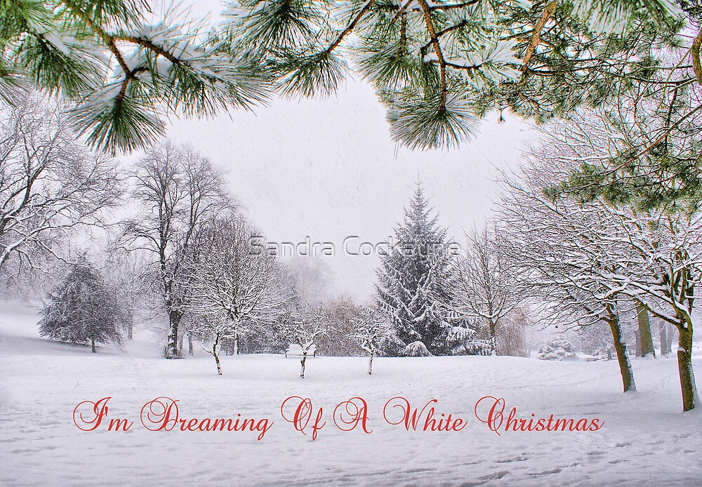 Image result for images of a white christmas