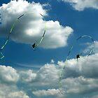 Aerial Ballet  by John Gaffen