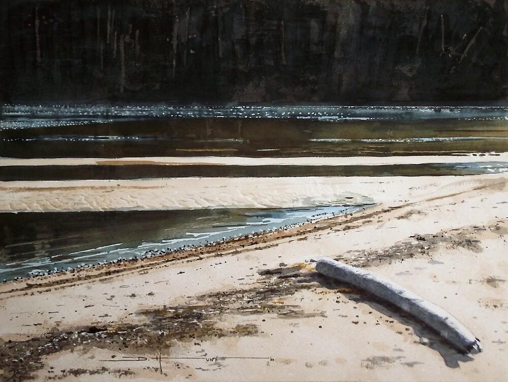 Wardrope Park Shoreline by Douglas Hunt