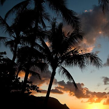 Sunset on the Beach by rudavis
