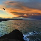 South of Cape Blanco by Randall Scholten