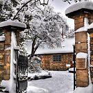 Snow Gate by KChisnall