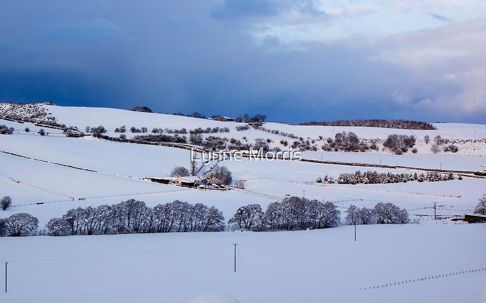 A Winter Landscape by Lynne Morris