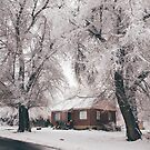 Snowy home by Courtney Tomesch