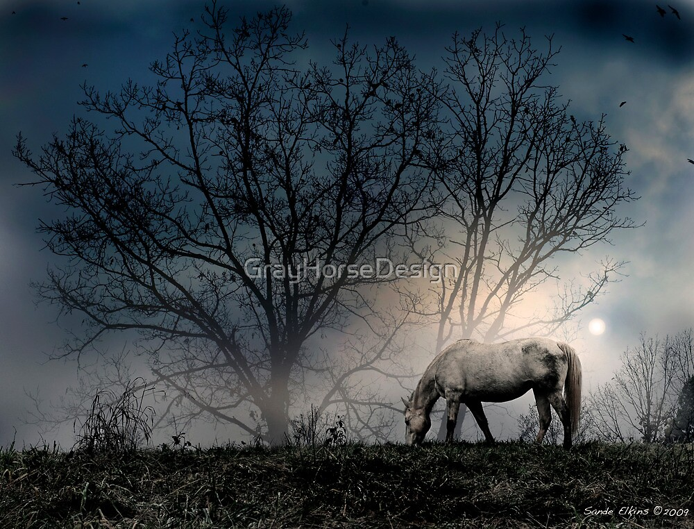 Moonlit Serenity by GrayHorseDesign