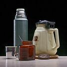 Simple memories by David  Hibberd