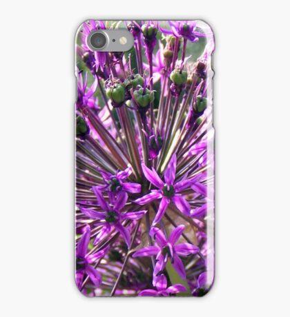 Allium aflatunense so intense iPhone Case/Skin