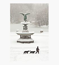 Bethesda Fountain Photographic Print
