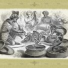 Snake Charming by Beesty