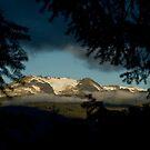 Glacier Through the trees by Michael Garson