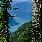 Howe Sound Framed by Michael Garson