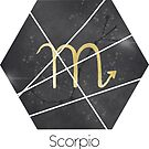 Scorpio - Zodiac sign by Cynthia Haller