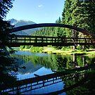 Rainbow Bridge at Lightning Lake by Michael Garson