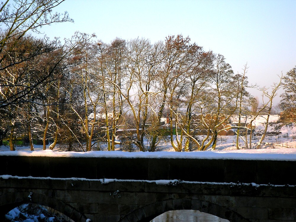 Winter scene by the Trent_2 by Ian Lyall