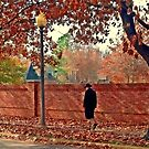 Autumn Stroll by Clayton  Turner