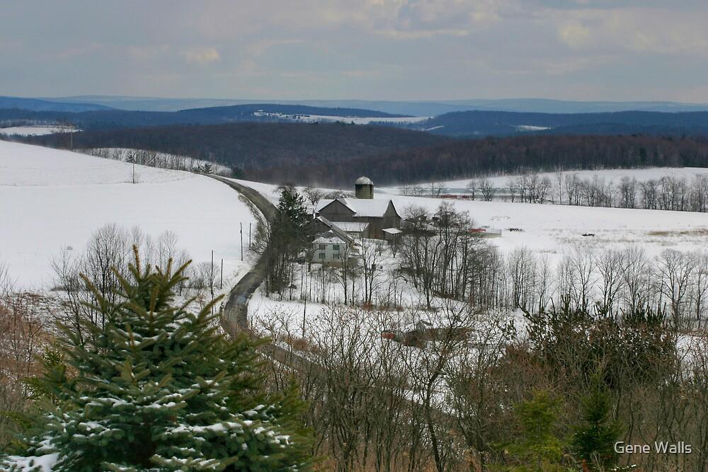 Pennsylvania Farmland Under A Blanket Of Snow by Gene Walls