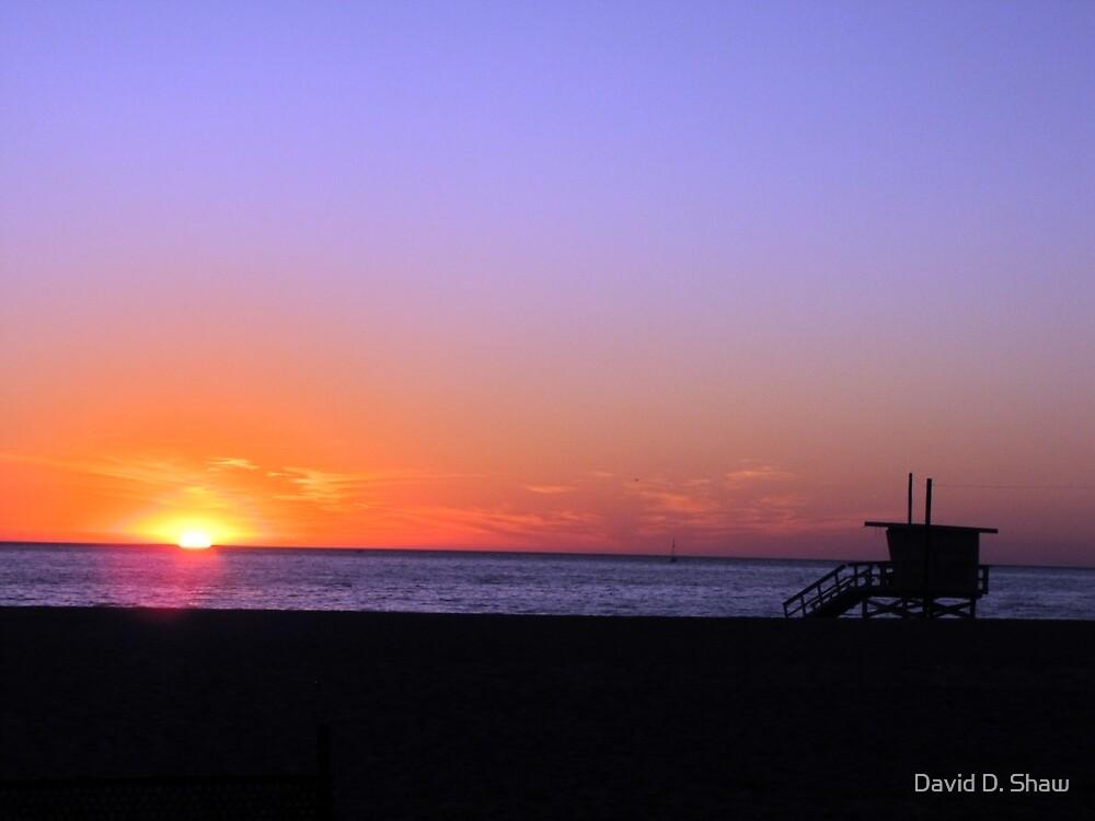 Sunset at Venice Beach by David Shaw