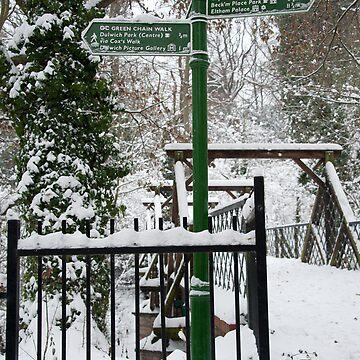 Which Way: Dulwich Woods, London, UK. by DonDavisUK