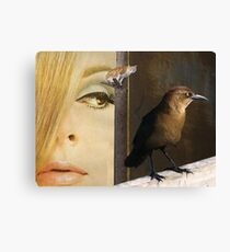 Birds eye view Canvas Print