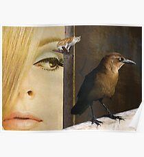 Birds eye view Poster