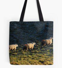 Three Sheep Walking Tote Bag