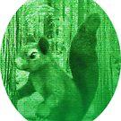 Squirrel Power! by SaveTheMurrel