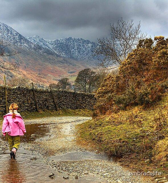 Little Girl Along The Lane by embracelife