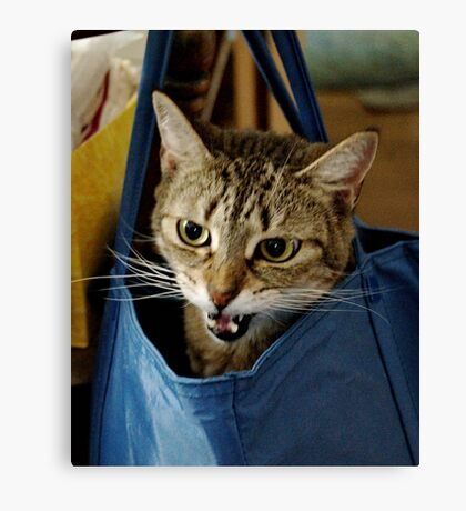 Bag it, Dano Canvas Print