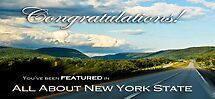 All About New York State Feature Banner by Susana Weber