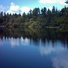 Tottiford Reservoir by lezvee