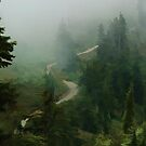 The Trail Back to Elfin Lakes Simplified by Michael Garson